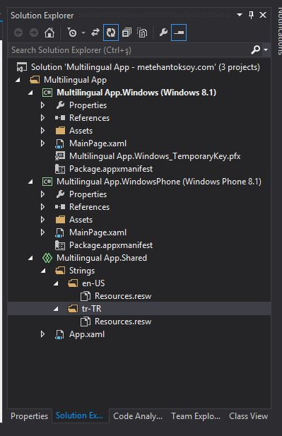 Visual Studio - Resource File